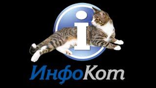 Выставка кошек ИнфоКот 2014