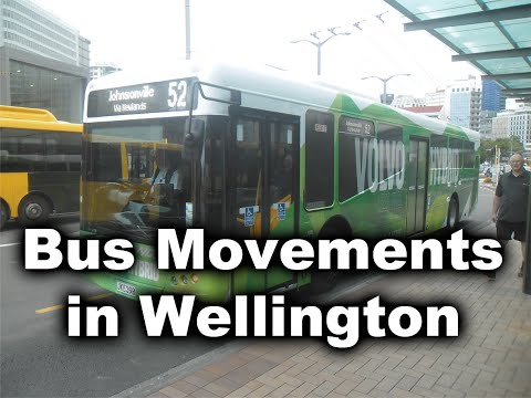 Buses at Wellington Central Bus Station - Janurary 2016