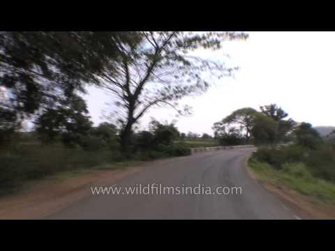 Road trip from Kanha to Jabalpur - Madhya Pradesh