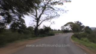 Road trip from Kanha to Jabalpur - Madhya Pradesh