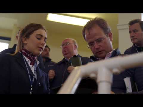 Tattersalls October Yearling Sale Book 1, 2017 Day 2