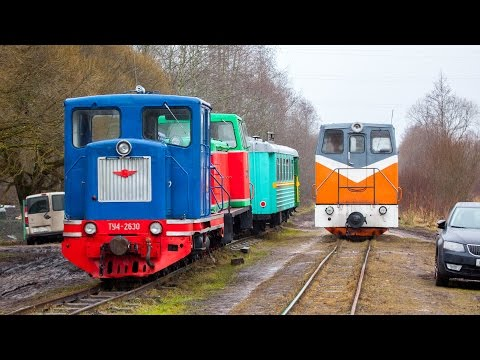 [TPR] TU6P-0050, Tesovo narrow gauge railway