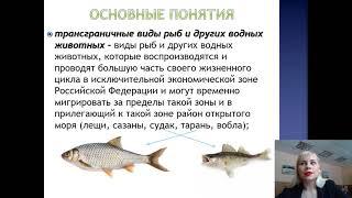 Лекция 23. Отношения в области рыболовства и сохранения водных биоресурсов_2021
