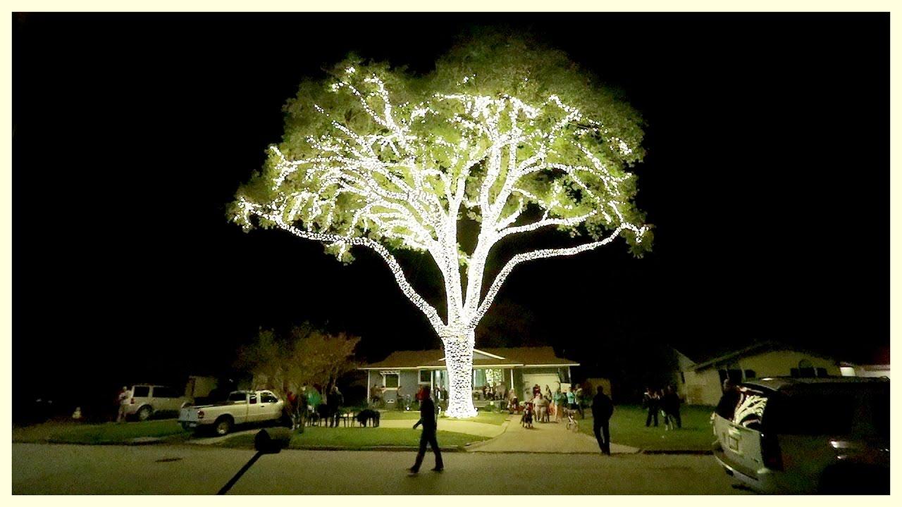 Lighting up my neighborhood for christmas youtube - Best way to light a christmas tree ...
