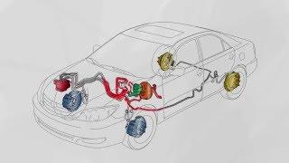 Composants de Freins D'origine Lexus