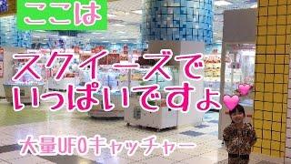 スクイーズ最大級!なんとあの日本一UFOキャッチャーがある【エブリデイ...