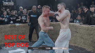 BEST OF TOP DOGS FC I Bare Knuckle Fight