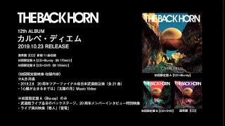 THE BACK HORN『カルペ・ディエム』全曲試聴ダイジェスト【楽曲解説付き】