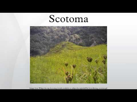 Scotoma -