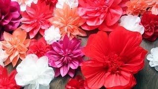 DIY: Бумажные цветы своими руками How to make giant paper flowers tutorial(Как сделать бумажные цветы своими руками на свадьбу, день рождения, оформить фотозону, украсить кенди бар..., 2016-04-02T14:45:51.000Z)