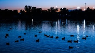 Popular Sunset Park Turns 50, Enjoys Rich History