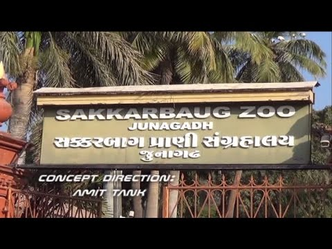SAKKARBAG ZOOLOGICAL PARK PART1 (Sakkarbaug Zoological Garden)