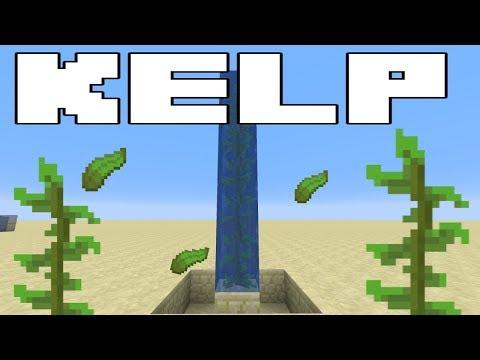 Minecraft 1.13 Bubble Elevators - The New KELP Meta - Minecraft Tricks