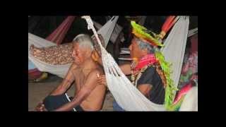 Download Yajé Aindeccu Fingia - Taita Rufino Mp3 and Videos