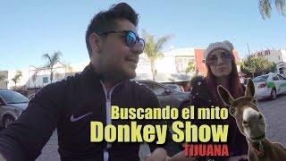 ¿Existe El Show Del Burro En Tijuana?