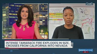Tamarack Fires Explodes in Size Crosses State Lines