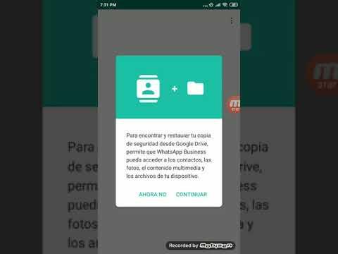 Como Usar WhatsApp Business - Tutorial thumbnail