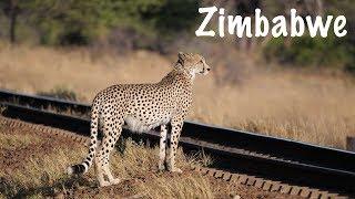 The Hide Safari Camp Experience | Hwange National ...