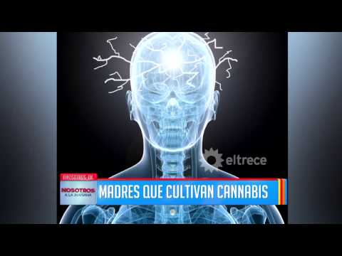 Mirá este informe sobre el cannabis medicinal