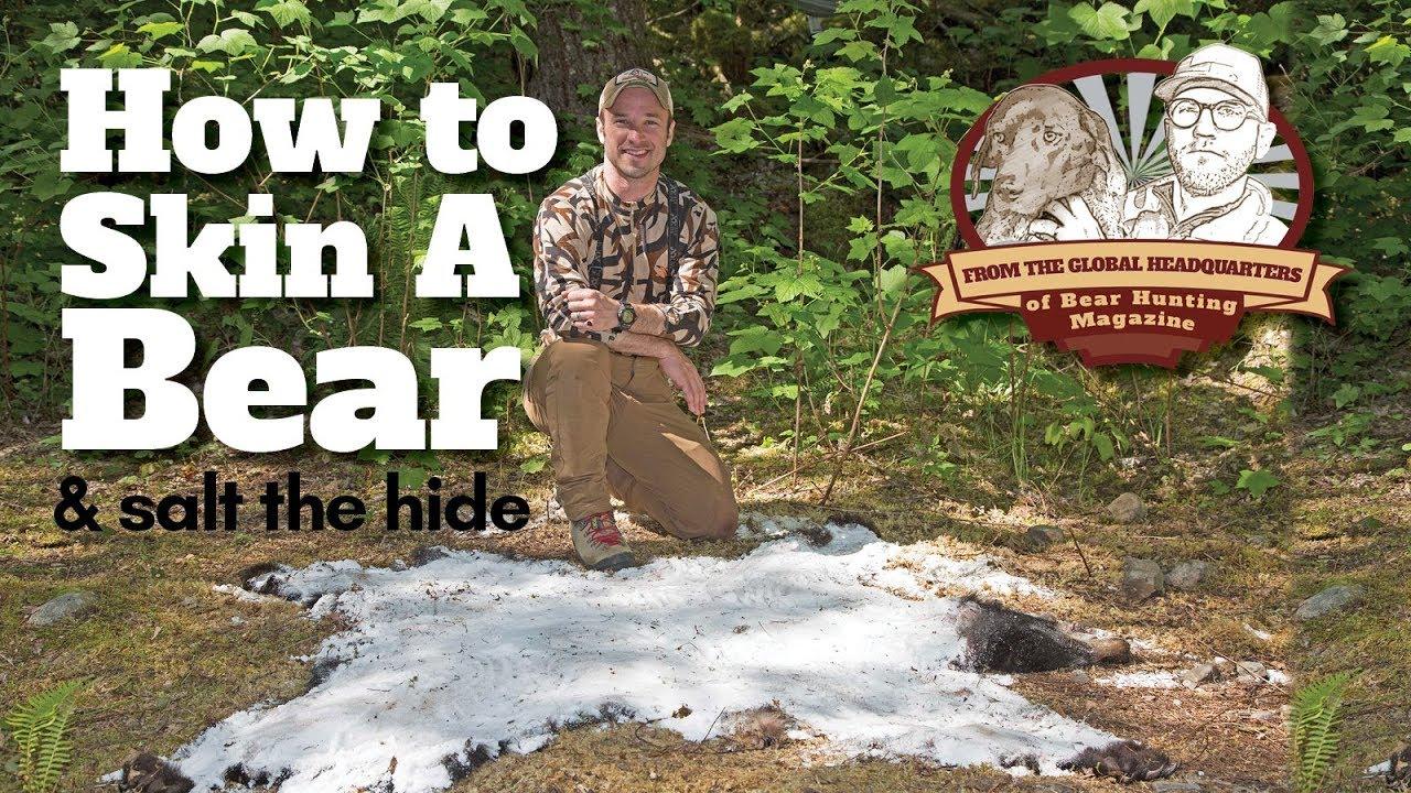 How to Skin a Bear & Salt the Hide