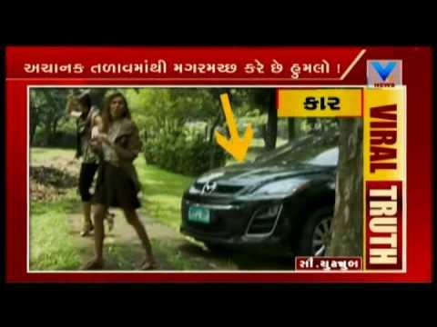 Viral Video Crocodile Attack and Eat teen girl   Vtv News