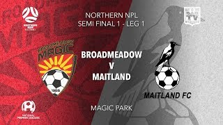 2019 NPL Northern NSW 1st Grade - Semi Final - Broadmeadow Magic v Maitland FC