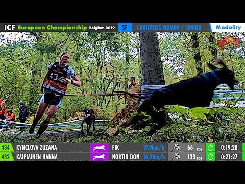 EUROPEAN CHAMPIONSHIP 2019 [Part3A: CANICROSS RACE]