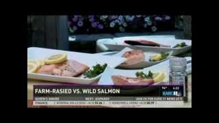 Farm-Raised vs. Wild Salmon (7/18/13 on KARE 11)