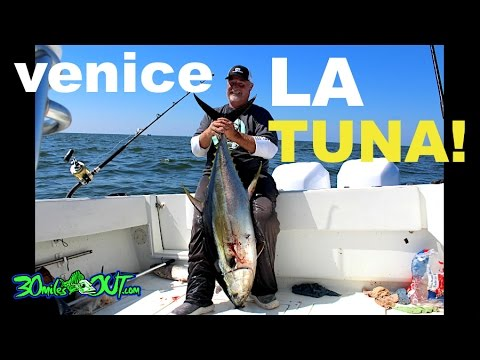 OFFSHORE FISHING - TUNA in Venice Louisiana