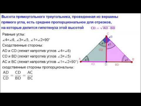 прямоугольном картинки треугольнике высота в