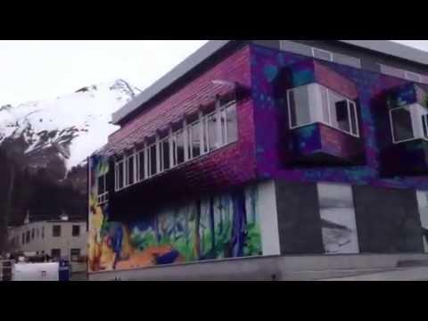 Millennium Tiles Colored Stainless Steel Facade Seward Alaska Library You