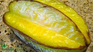 Jsou ovoce karambola zdravé?