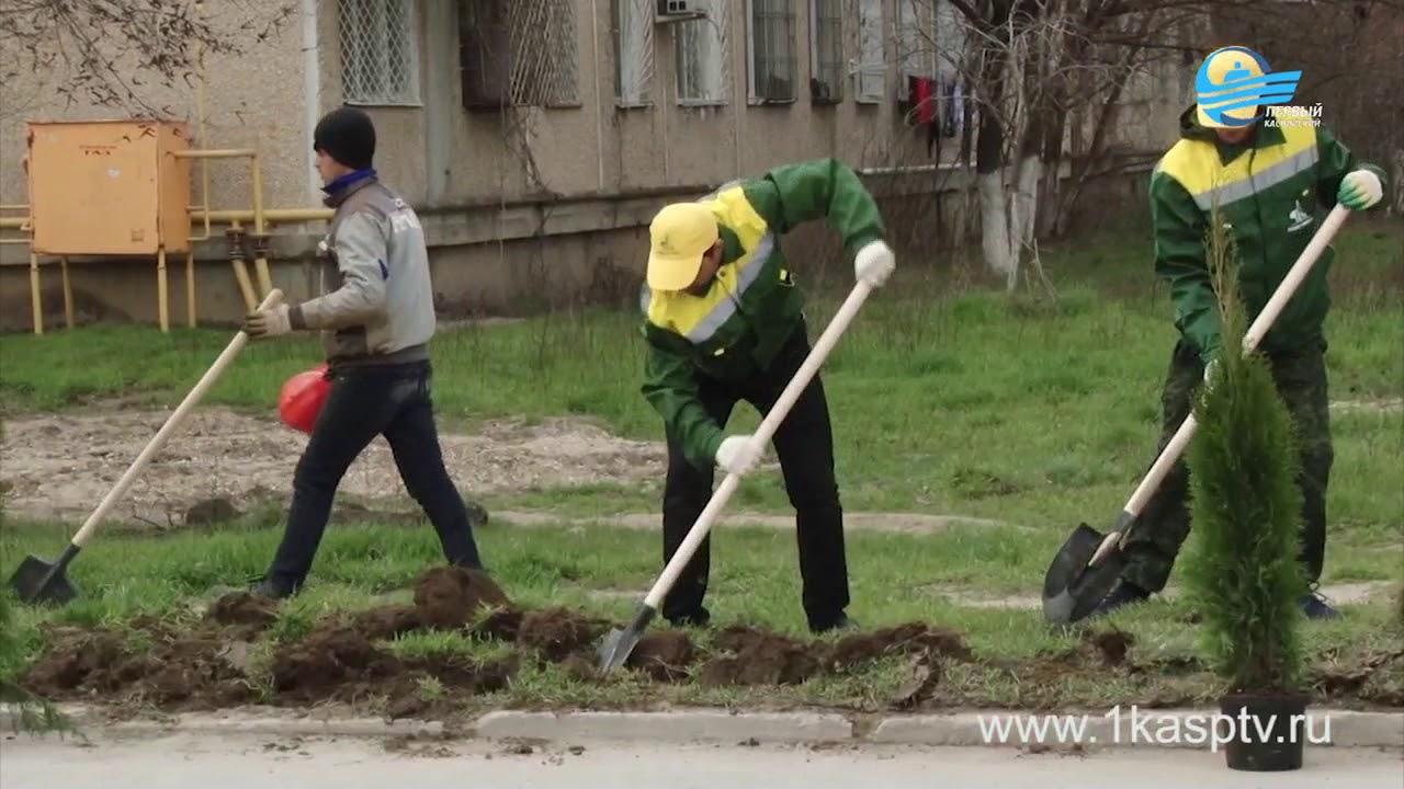 Каспийчане вышли на субботник. Каспийск активно готовится к ЧЕ по борьбе