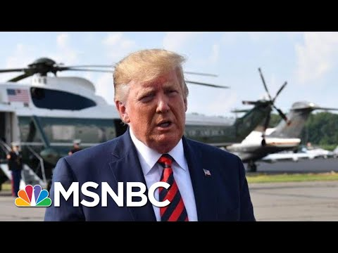 Trump Retreats On Background Check, Blames Mental Health For Gun Violence - The Day That Was | MSNBC