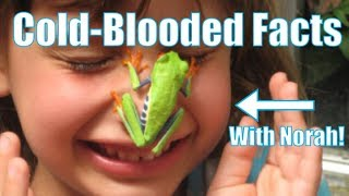 Cold-Blooded Facts about Cold-Blooded animals! FEATURING NORAH!