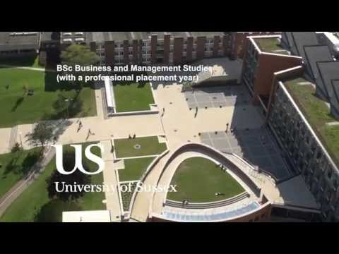 University of Sussex, BSc Business and Management Studies (with a professional placement year)