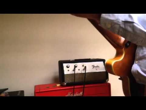 Fender Echo Reverb Unit - YouTube