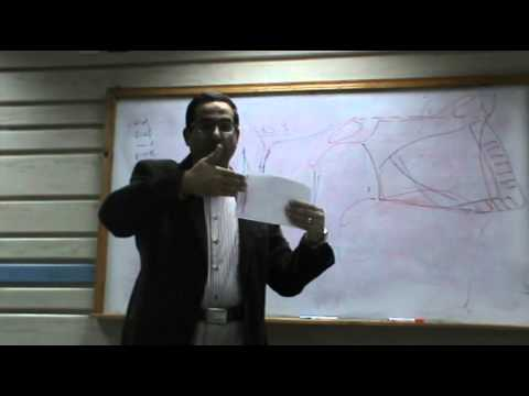 ENT - Dr.Nassem - Nose (3) -Diseases of nasal septum - Part (1)