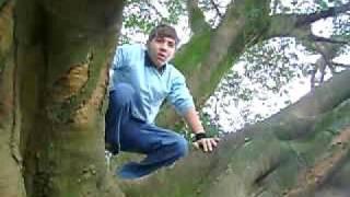 Download Video Bla bla bla Whiskas Sachet MP3 3GP MP4