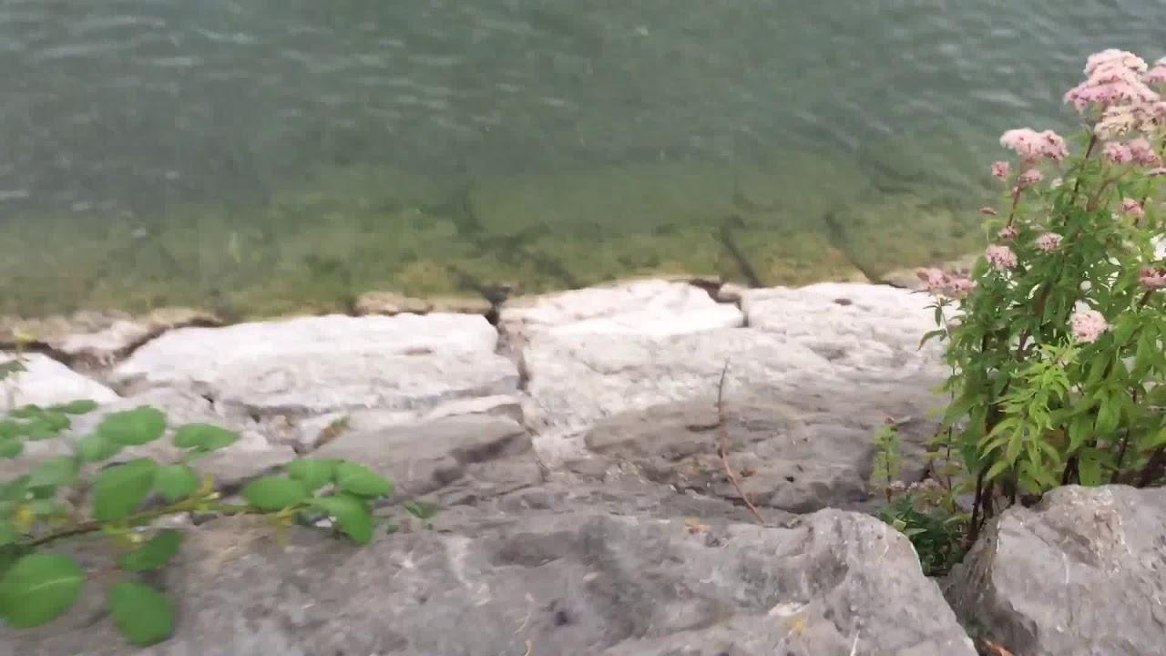 Bodensee bei der Schweiz
