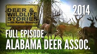 The Alabama Deer Association - Deer & Wildlife Stories