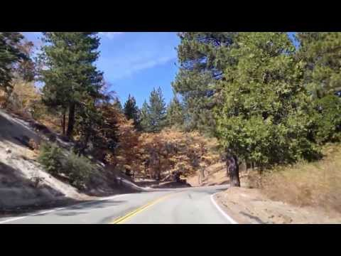San Bernardino Mountain Road Trip