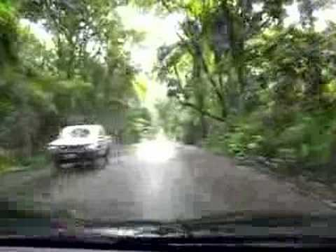 Driving through the Panamanian rainforest