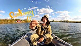 Рыбалка на щуку на озере, спиннинг осенью 2019
