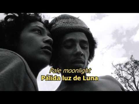 How Many Times - Bob Marley (LYRICS/LETRA) (Reggae)