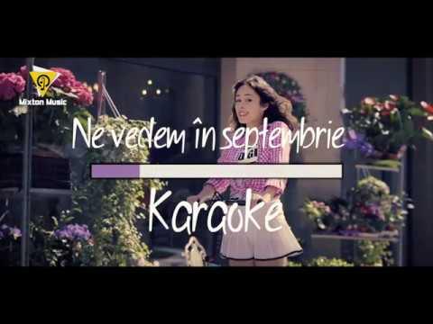 Andra Gogan - Ne vedem in septembrie (Karaoke version)