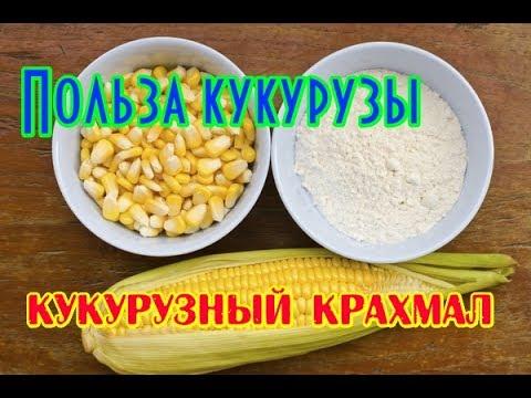 Как сделать кукурузный крахмал фото 434