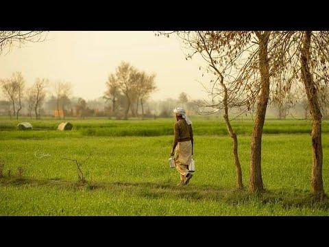Afghan Full HD Film - Asia Ban  فلم افغانی  آسیابان