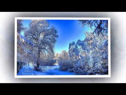Снег и елки,ледяные горки
