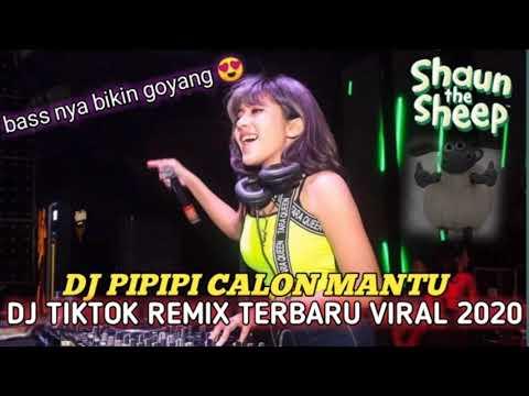 dj-tik-tok-terbaru-2020---dj-pipipi-calon-mantu-remix-full-bass